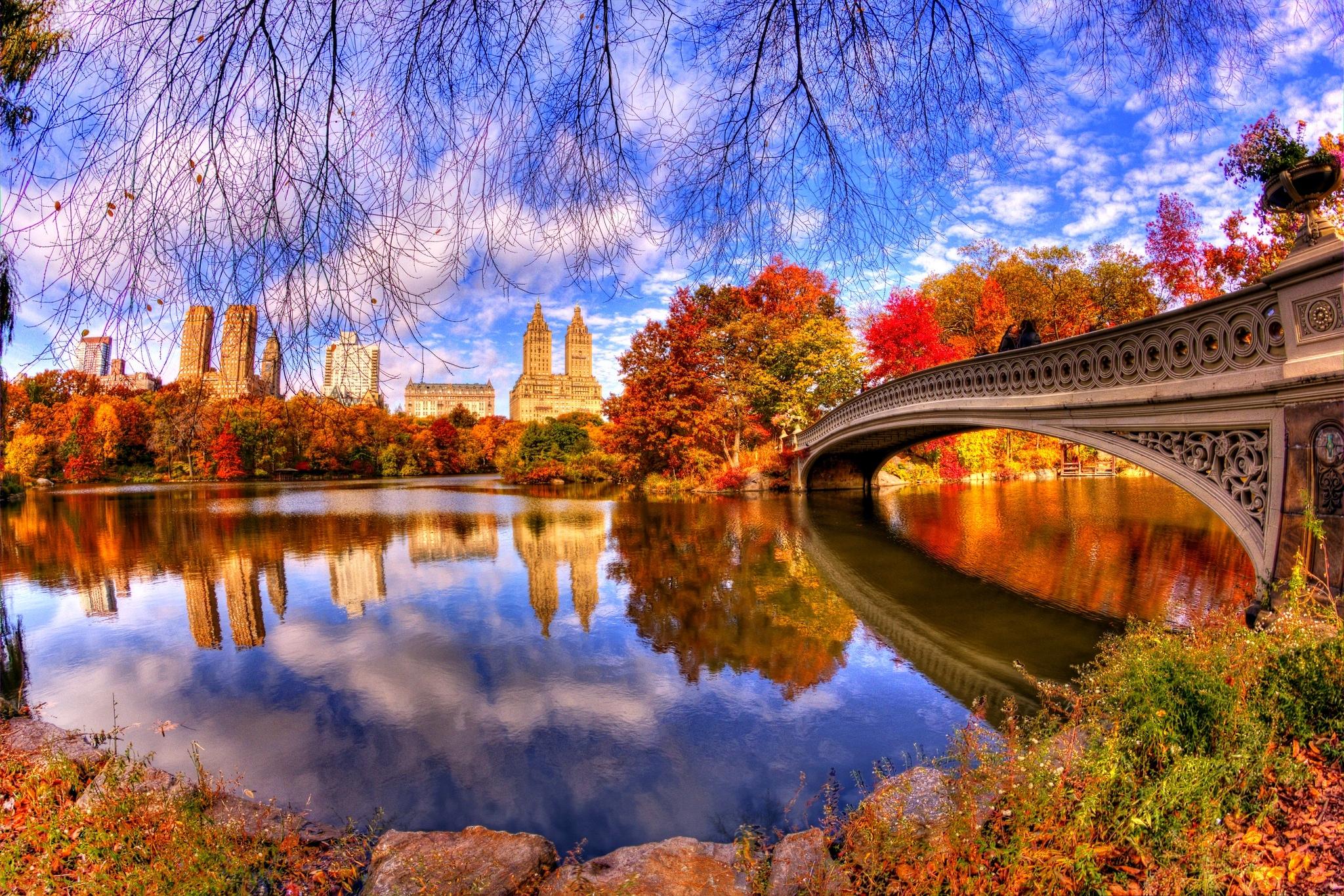 new york united states central park sky bridge tree leaves ...  |Autumn Central Park Screensavers